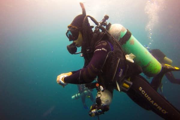 PADI Master Scuba Diver Trainer Utila Honduras Central America